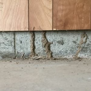 Meagher Termite Treatment