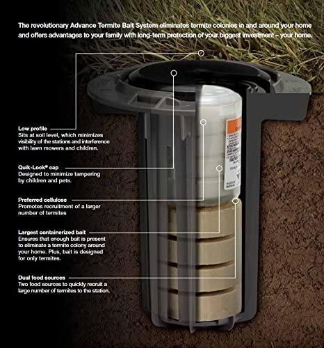 Termite Bait Station Treatment